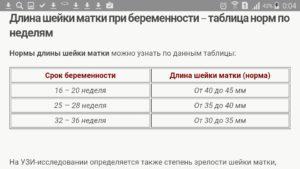 Длина шейки матки в 12 недель норма