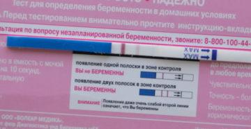 Через 2 недели после зачатия покажет ли тест беременность